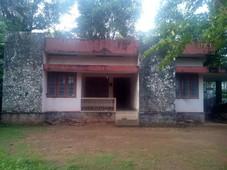 house pathanamthitta