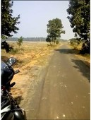 100 bigha agricultural land in pratappur mankar bardhaman wb